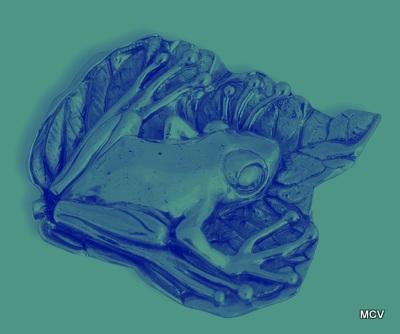 La rana - foto retocada de broche MCV